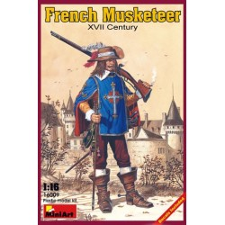 French musketeer. XVII century