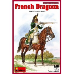 French dragoon. Napoleonic wars